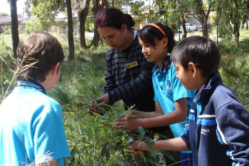 Teacher and students outdoors looking at a plant